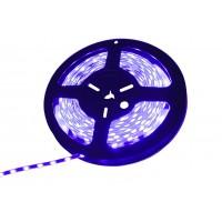 Светодиодная лента H-5630-BLUE (синяя) IP-67