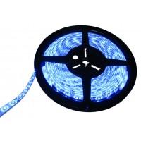 Светодиодная лента RD3528BN30-FG (синие ТОР-светодиоды)